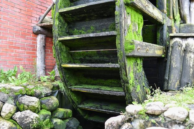 Roda de madeira com musgo de um antigo moinho