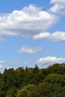 Roda gigante atrás das árvores verticais
