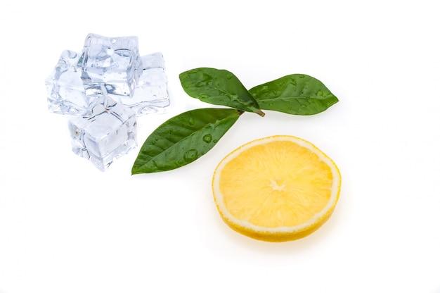 Rodada fatia de limão brilhante, fresco e suculento e algumas folhas verdes e cubos de gelo em um fundo branco