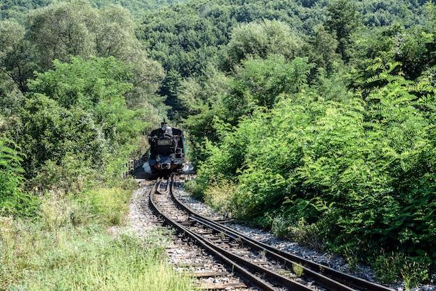 Rodas de locomotivas velhas. trem histórico a vapor passa pela floresta decídua.