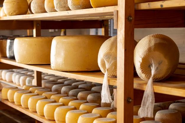 Rodas de queijo orgânico delicioso