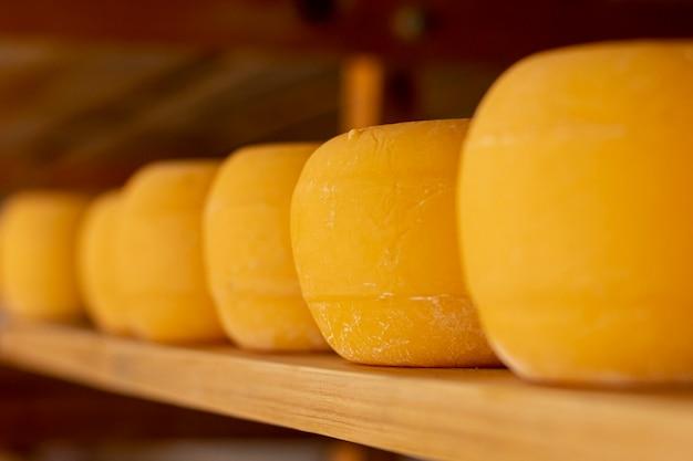Rodas de queijo rústico em uma prateleira