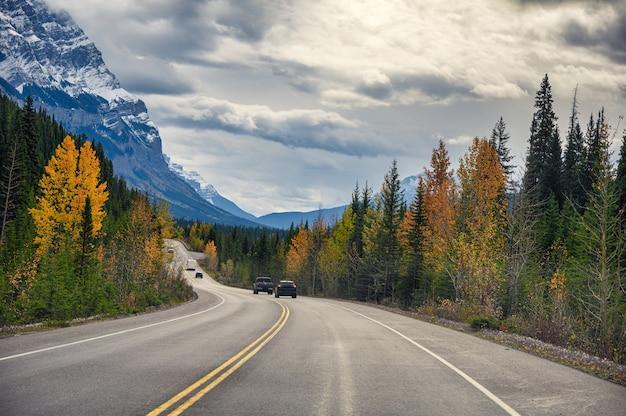 Rodovia com montanhas rochosas na floresta de outono