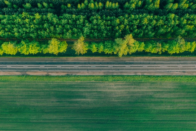 Rodovia na floresta do outro lado da estrada. Foto Premium
