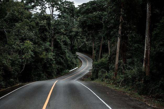 Rodovia na selva da tailândia