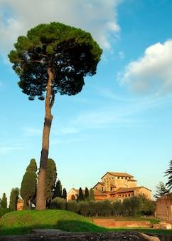 Rome city italy casa romana arquitetura genuína