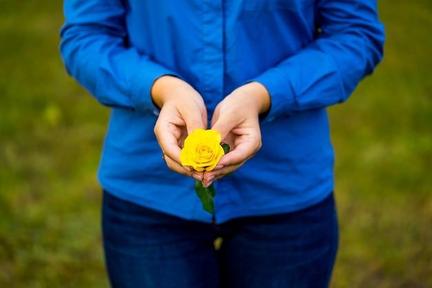 Rosa amarela com mãos de mulher