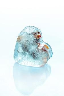Rosa congelada no cubo de gelo