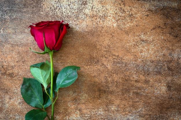 Rosa do vermelho no fundo oxidado copyspace do dia de valentim do conceito do amor.