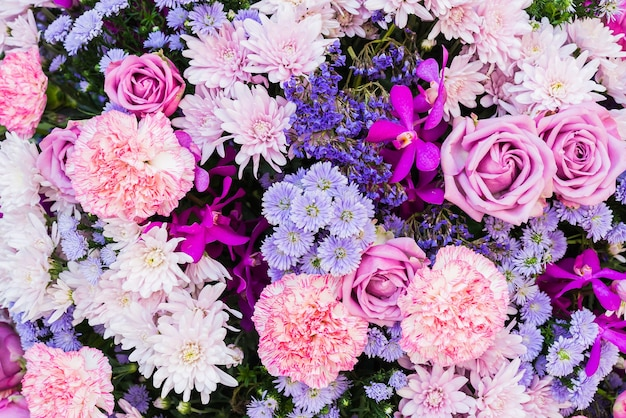 Rosa e flores roxas
