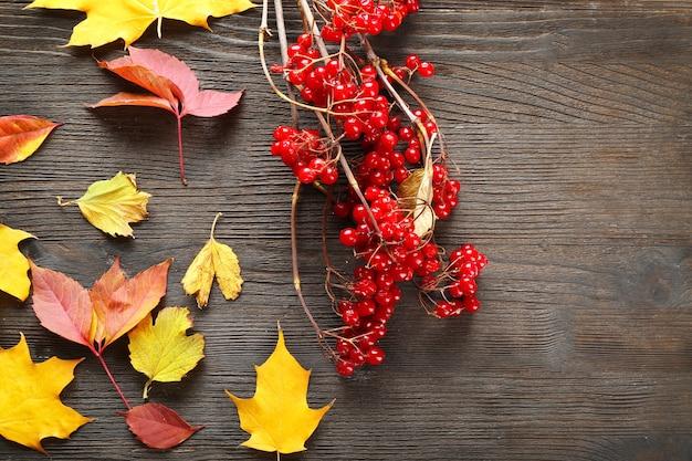 Rosa-guelder e folhas de outono em madeira