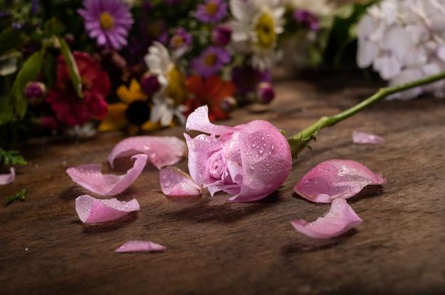 Rosa rosa e pétalas em madeira
