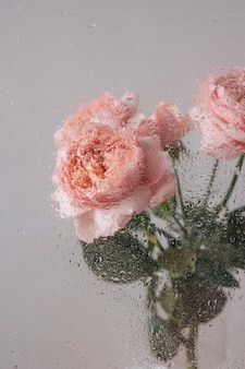 Rosa rosa em um vaso na mesa de madeira no fundo da parede cinza perto da janela de vidro com vista lateral para a chuva. foto de alta qualidade