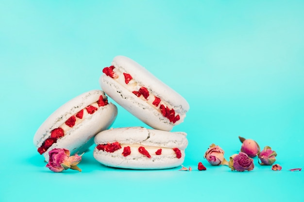Rosa secada perto dos macaroons brancos contra o contexto de turquesa