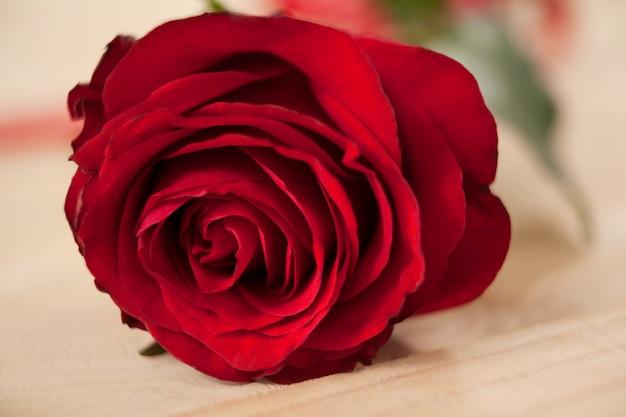 Rosa vermelha contra a mesa de madeira