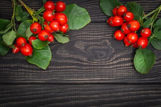 Rosa vermelha e folhas em quadros pretos