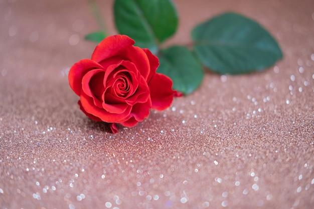 Rosa vermelha em papel glitter. celebração do feriado.