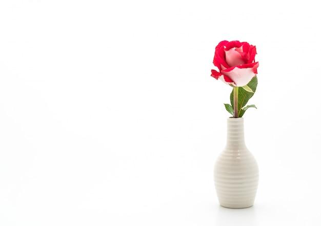 Rosa vermelha em vaso branco
