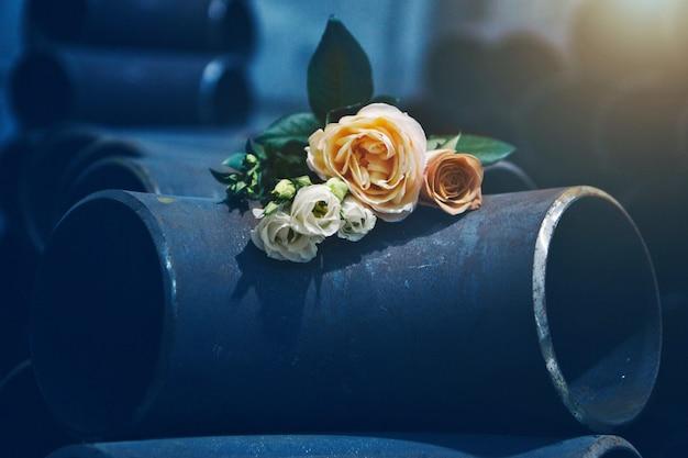 Rosas amarelas e brancas nas tubulações do metal. buquê de flores no armazém de ferro