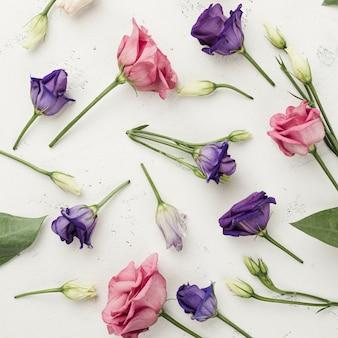Rosas coloridas de vista superior na mesa