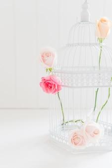 Rosas coloridas decorativas em uma gaiola
