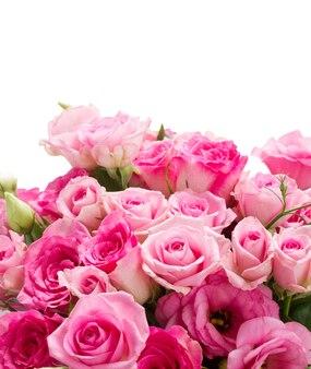 Rosas cor de rosa e flores eustoma fecham-se isoladas