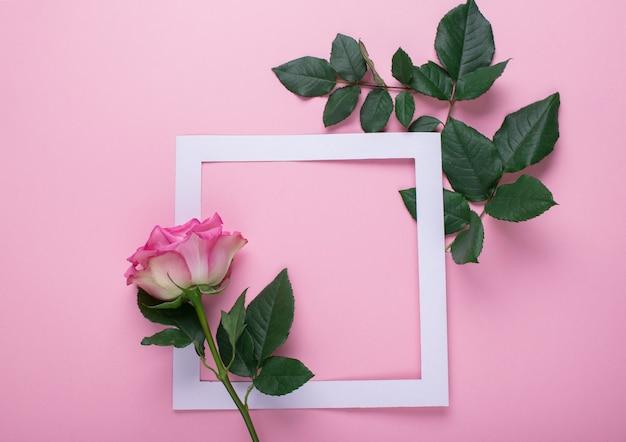 Rosas cor de rosa e uma moldura de papel branco são decoradas com folhas frescas em um fundo rosa