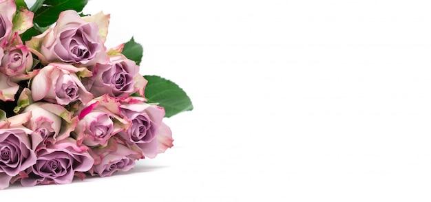Rosas cor de rosa em fundo branco. plano de fundo dia dos namorados. padrão de flores.