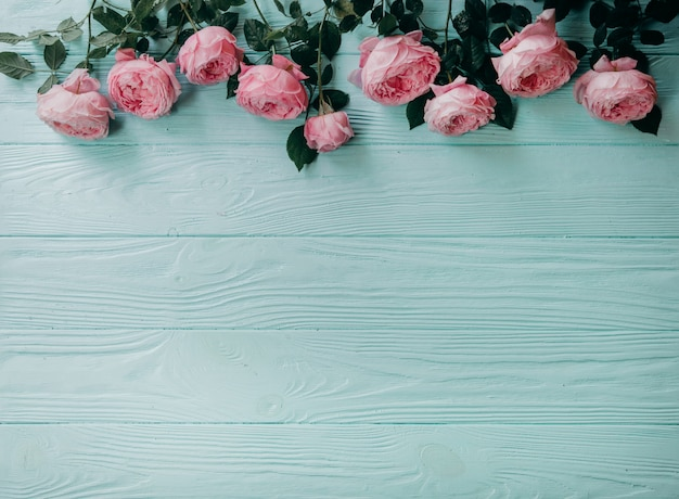 Rosas cor de rosa em uma mesa azul, conceito de verão