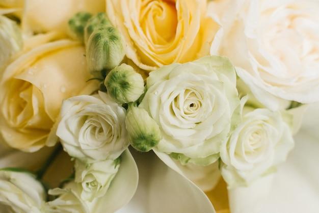 Rosas de chá híbridas rosa e laranja