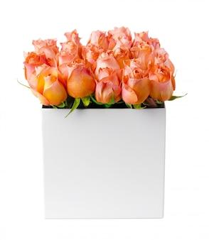 Rosas de cor pêssego em uma caixa de papelão isolada