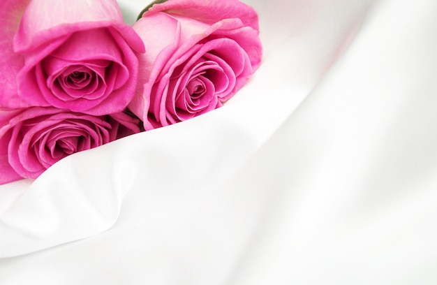 Rosas em fundo branco de seda