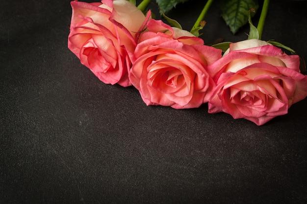 Rosas rosas em fundo preto