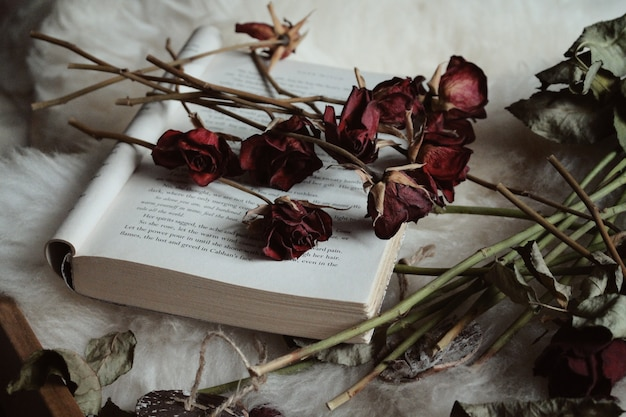 Rosas secas em um livro aberto na mesa sob as luzes