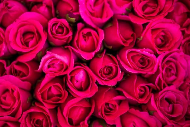 Rosas vermelhas com textura de fundo
