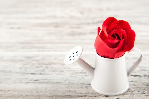 Rosas vermelhas texturizadas e um regador em miniatura, um close de balde. conceito de jardinagem primavera sobre fundo branco de madeira.