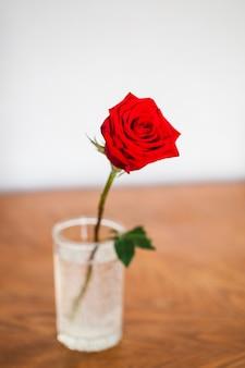 Rose na mesa em um vaso, uma rosa cresceu em seu jardim, decoração de interiores