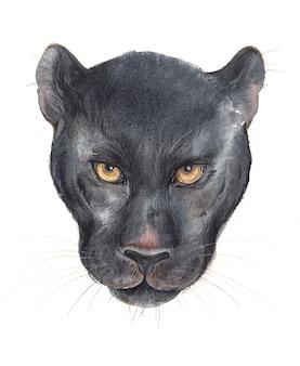 Rosto de pantera negra em aquarela