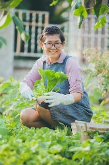 Rosto sorridente de mulher asiática colhendo vegetais orgânicos