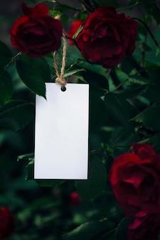 Rótulo de maquete ou cartão de visita no fundo de um arbusto de rosas papelaria humor romântico dia dos namorados