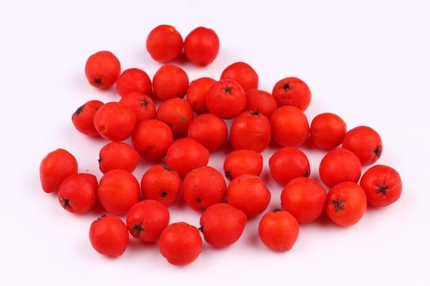 Rowan várias frutas em uma superfície branca