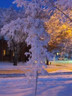 Rua coberta de neve