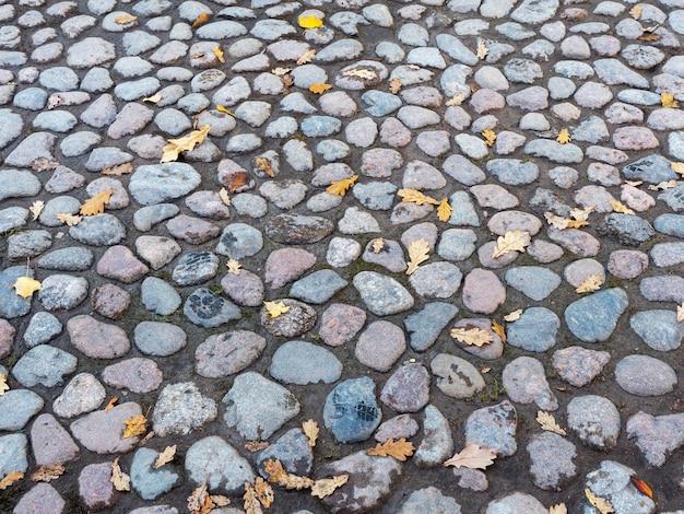 Rua de paralelepípedos com fundo de folhas de outono.