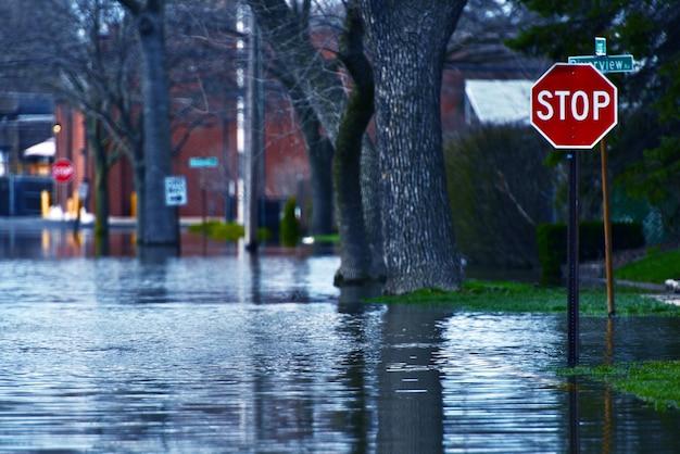Rua inundada