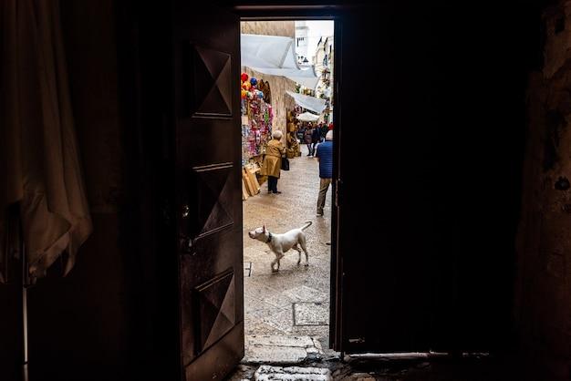 Ruas coloridas e velhas da cidade italiana turística de bari.