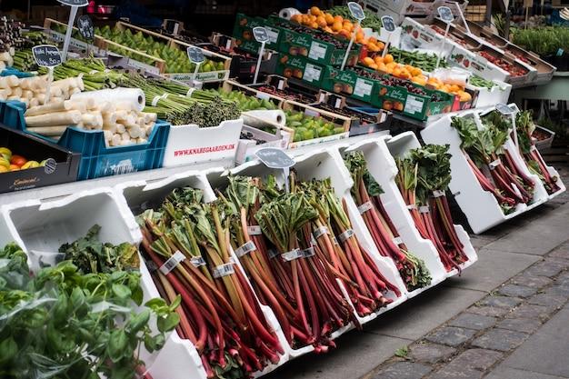 Ruibarbo no mercado dos fazendeiros