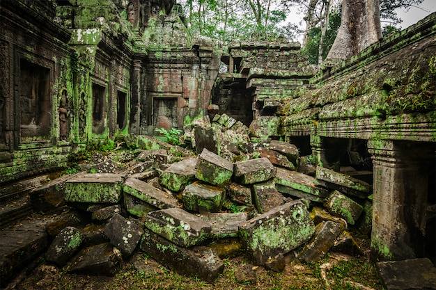 Ruínas antigas do templo de ta prohm, angkor, camboja