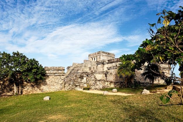 Ruínas arqueológicas e árvores de tulum, no méxico