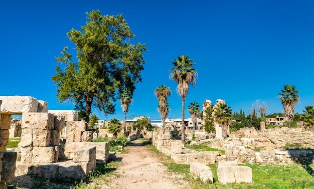 Ruínas da necrópole de al bass tire no líbano