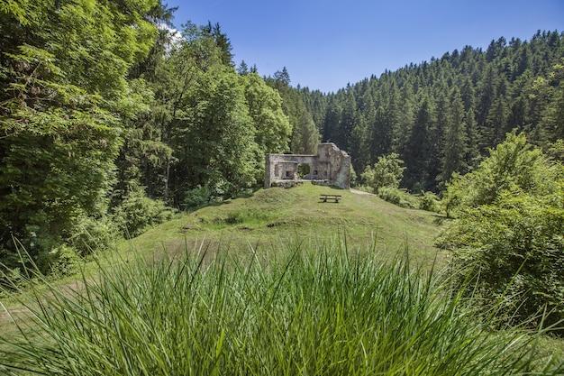 Ruínas de um antigo castelo em vuzenica, eslovênia durante o dia no verão
